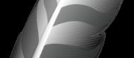 Programma Scarica IDE Wing (ultimo 2019) per Windows 10, 8, 7